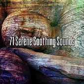 71 Serene Soothing Sounds von Best Relaxing SPA Music
