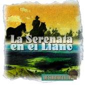 Las Serenatas del Milenio: la Serenata en el Llano de Various Artists