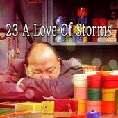 23 A Love Of Storms de Thunderstorm Sleep