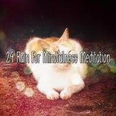 24 Rain For Mindfulness Meditation de Thunderstorm Sleep