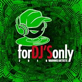 For Dj's Only 2019 by Various Artists