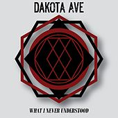 What I Never Understood by Dakota Ave