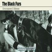 Doomed Blues di The Black Furs