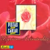 Pistas Para Cantar Como Myriam Hernández de Orquesta Melodía