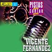 Pistas Para Cantar Como Vicente Fernández, Vol. 2 de Mariachi Garibaldi