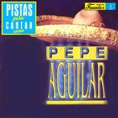 Pistas Para Cantar Como Pepe Aguilar de Mariachi Garibaldi