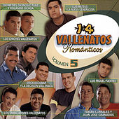 14 Vallenatos Románticos (Vol. 5) de Various Artists