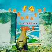 14 Cañonazos Bailables (Vol. 2) de Various Artists