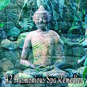 42 Harmonious Spa Remedies de Nature Sounds Artists