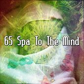65 Spa To The Mind de White Noise Babies