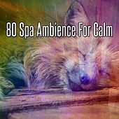 80 Spa Ambience For Calm de Best Relaxing SPA Music
