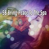 58 Bring Peace To The Spa by Deep Sleep Music Academy