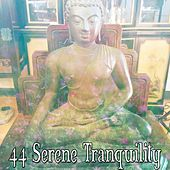 44 Serene Tranquility de Zen Meditate