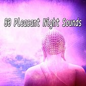 80 Pleasant Night Sounds von Massage Therapy Music