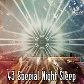 43 Special Night Sleep by Lullaby Land