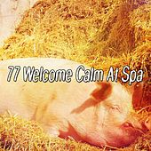 77 Welcome Calm At Spa von Rockabye Lullaby