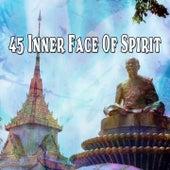 45 Inner Face Of Spirit de Meditación Música Ambiente