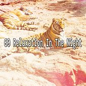 60 Relaxation In The Night by Ocean Sounds Collection (1)