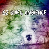 62 Quiet Ambience de Water Sound Natural White Noise