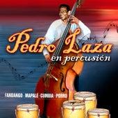 Pedro Laza en Percusión de Pedro Laza Y Sus Pelayeros