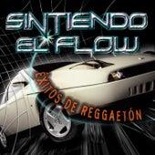 Sintiendo el Flow: Éxitos de Reggaetón de Various Artists