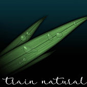 Train Natural by Natural Training