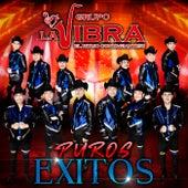 El Ritmo Contagiante, Puros Éxitos by Grupo La Vibra