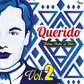 Querido Tributo Indie Al Divo (Vol.2) by Various Artists