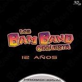 12 Años (Promocional) by Los Bam Band Orquesta