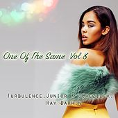 One Of The Same  Vol 8 by Various Artists
