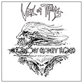 Ceremony (Sanity Turns) by Veil Of Thorns