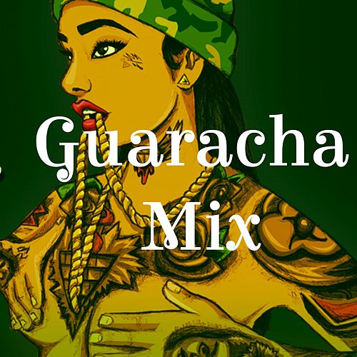Guaracha Mix de Reggaeton Bachata Hit