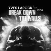 Break Down the Walls de Yves Larock