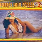 Porros, Sólo Porros (Vol. 2) de Various Artists