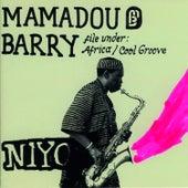 Niyo von Mamadou Barry
