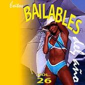 Éxitos Bailables del Año (Vol. 26) de Various Artists