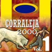 Fiestas en Corraleja 2000 (Vol. 1) de Various Artists