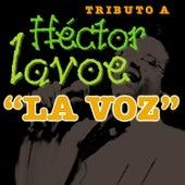 """Tributo a Hector Lavoe """"La Voz"""""""" de Los Titanes"""