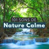 101 Sons de Nature Calme - Sons de la nature nuit pour relaxation s'endormir de Douce Nuit