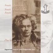 Beethoven: Pour un sou perdu de Enguerrand-Friedrich Lühl Dolgorukiy