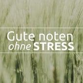 Gute noten ohne stress - Entspannende Musik zum Lernen, Konzentration Musik, um den Geist zu entspannen de Quiet Moments