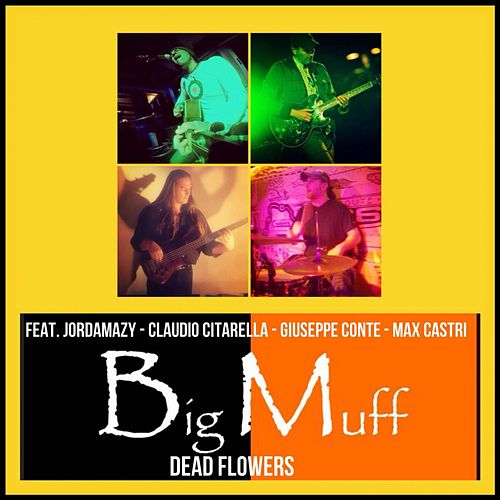 Dead Flowers (Recorded at Media Studio (Urbino - Italy) 2001) by Big Muff