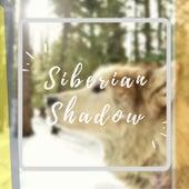 Siberian Shadow by Dr Rahul Vaghela