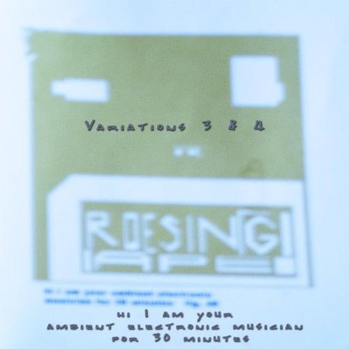 Fucks Me Variations 3 & 4 by Roesing Ape