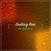15 Loopable Rain Noises to Sleep Eight Hours by Rain for Deep Sleep, Rainfall, The Rain Library