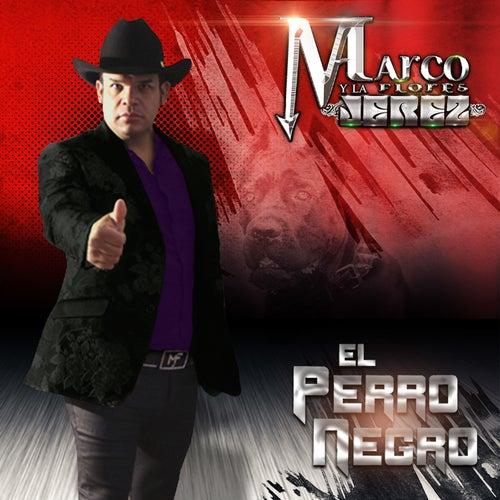 El Perro Negro by Marco Flores y La Jerez