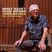 What Have I Done Wrong de John Mayall