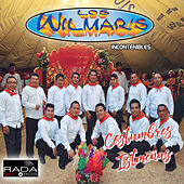 Costumbres Istmeñas by Wilmar's