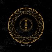 Destiny by Jerry Allen