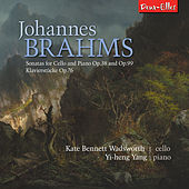 Brahms Cello Sonatas by Various Artists